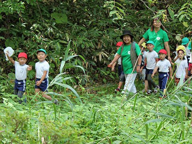 市民の森で自然探索